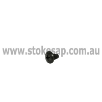 HINGE FIXING SCREW - Click for more info
