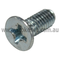 SCREW2 4X10 TS ZIN - Click for more info